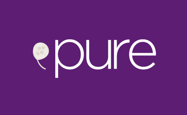 Pure-Arts-Group-Annual-Artists-Call-for-Entries-2013-2014