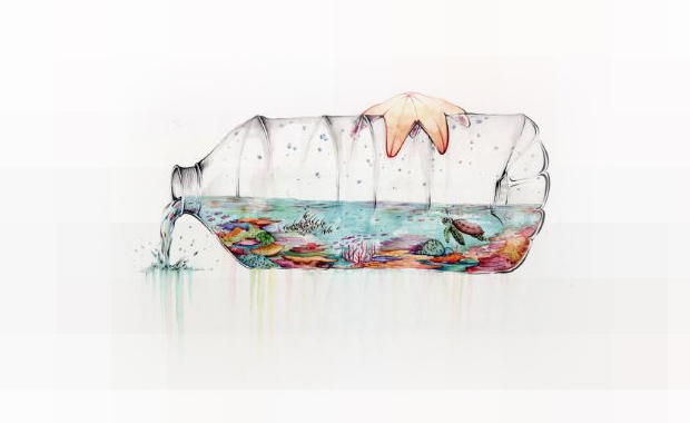 Reef-In-A-Bottle-Riley-Samels-Winner-Science-Without-Borders-2014