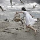Stephanie-M-Bracciano-Photographer-Forum-Contest-4th-Place-Winner