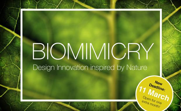 biomimicry-eleven-magazine-architecture-and-design-competition-badge