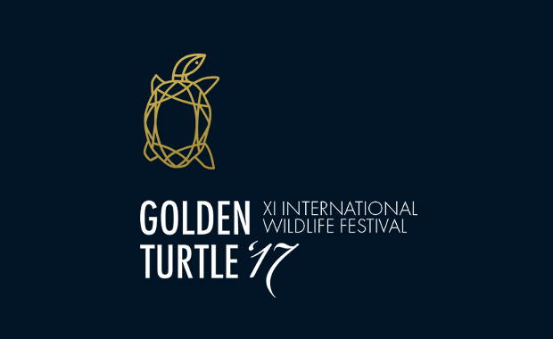 Golden-Turtle-2017-Wildlife-Art-Photography-Competition