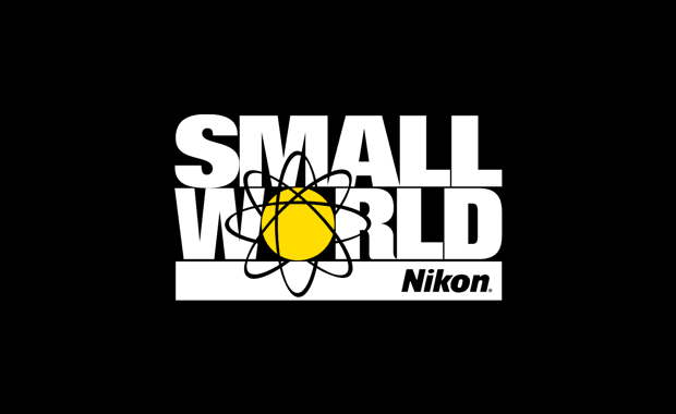Nikon-Small-World-2019-Photomicrography-and-Video-Competition