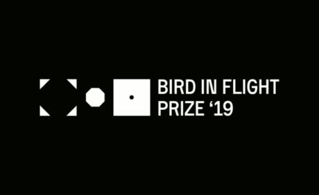 Bird in Flight Prize '19: Unconventional Photographers Award