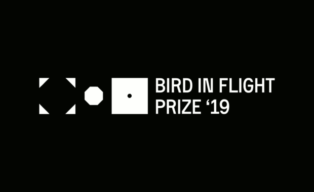 Bird-in-Flight-Prize-2019-Unconventional-Photographers-Award