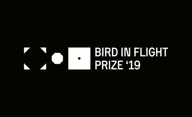 Bird-in-Flight-Prize-2019-Unconventional-Photographers-Award