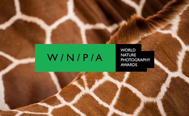 World-Nature-Photography-Awards-WNPA-2020-Louise-Pilgaard