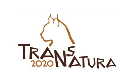 TransNatura 2020 International Nature Photo Contest