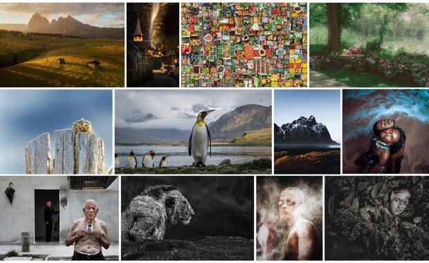 Sony-World-Photography-Awards-2020-Winners-Mosaic